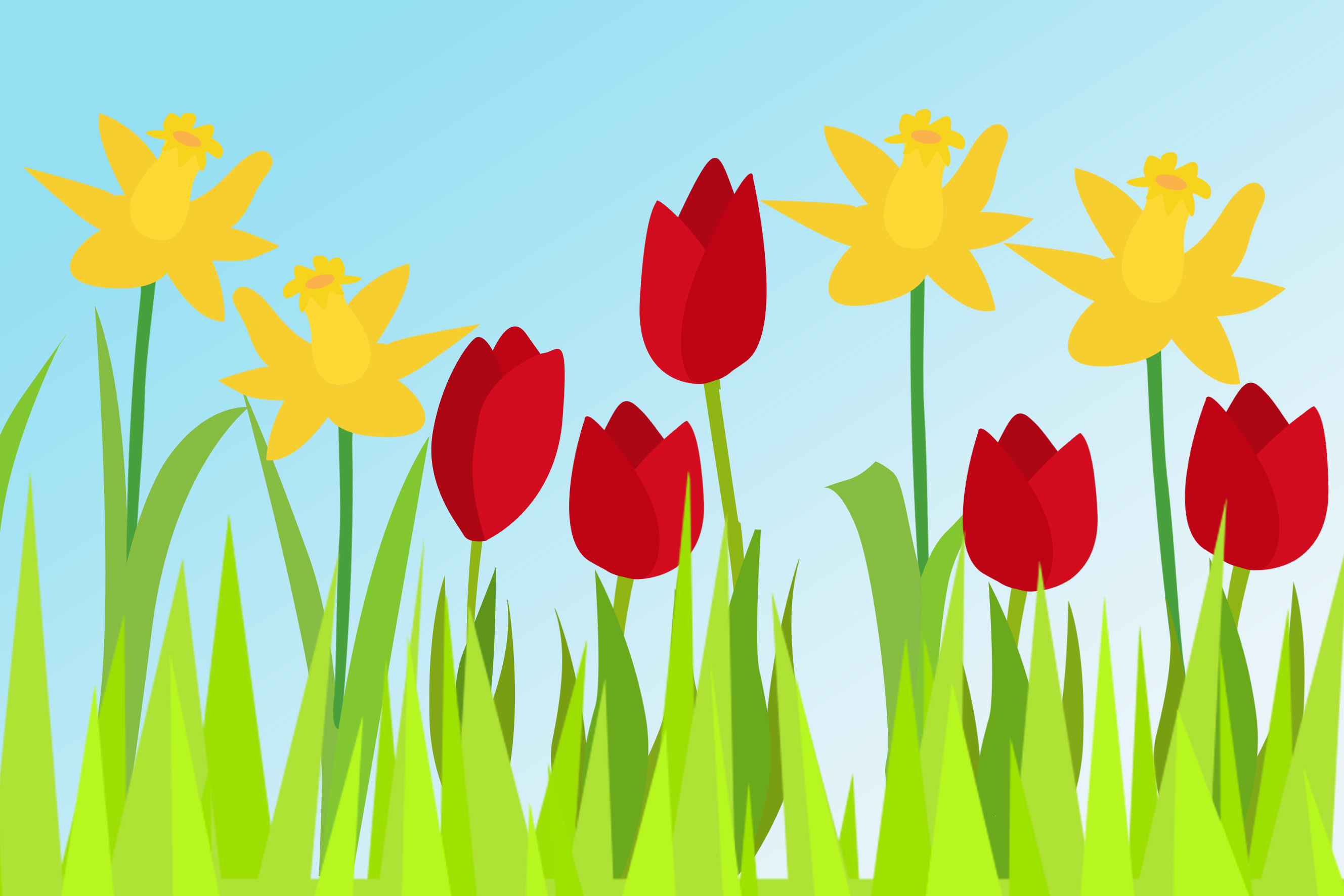 Daffodils And Tulips Free Early Years Amp Primary Teaching