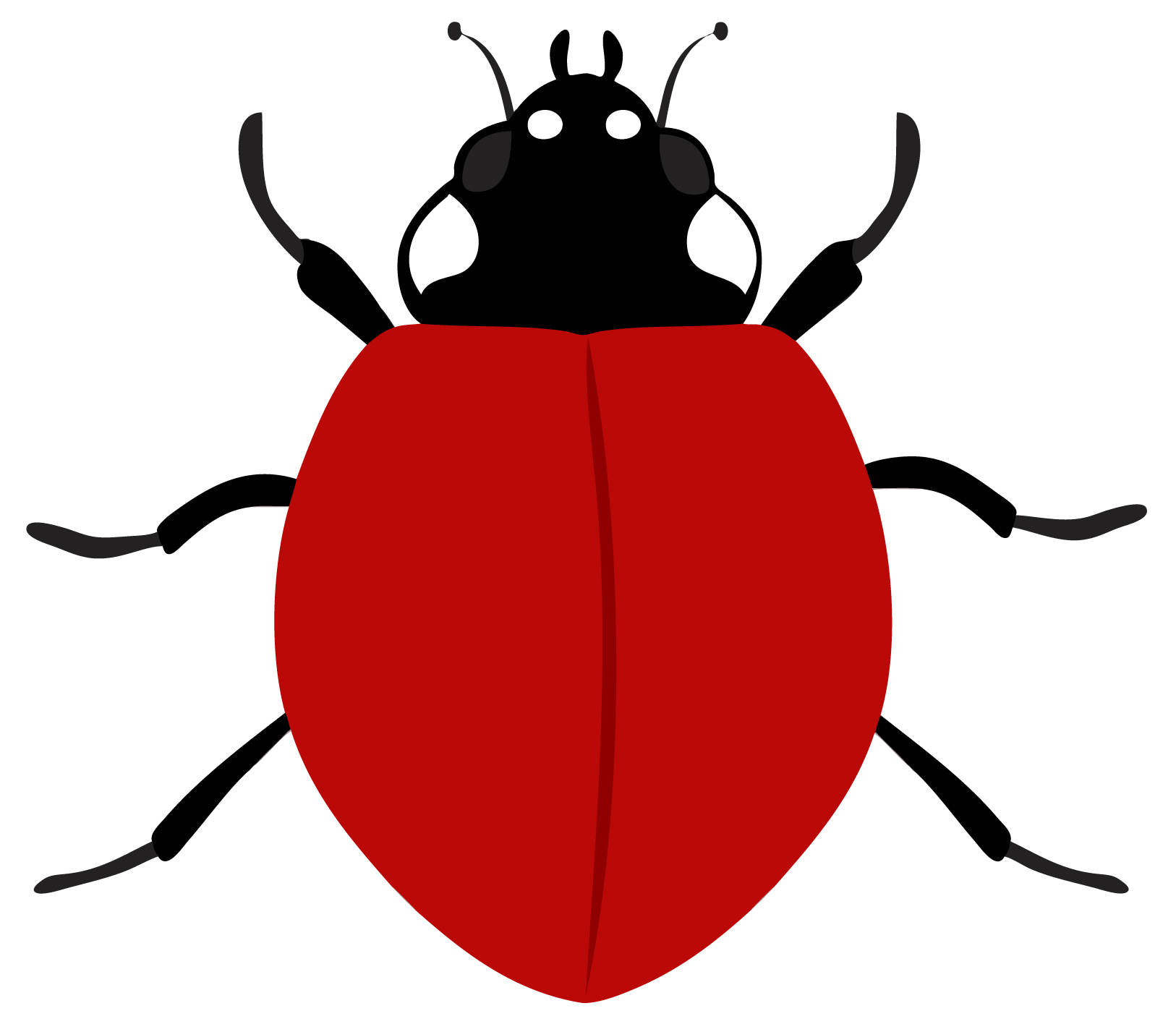 Early Learning Resources Ladybird 2
