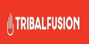 TribalFusion-CPM