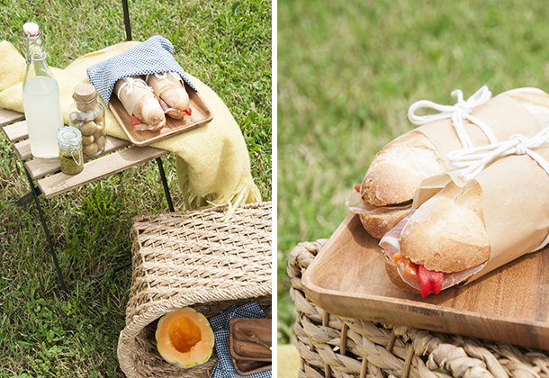 picnic for fathers day