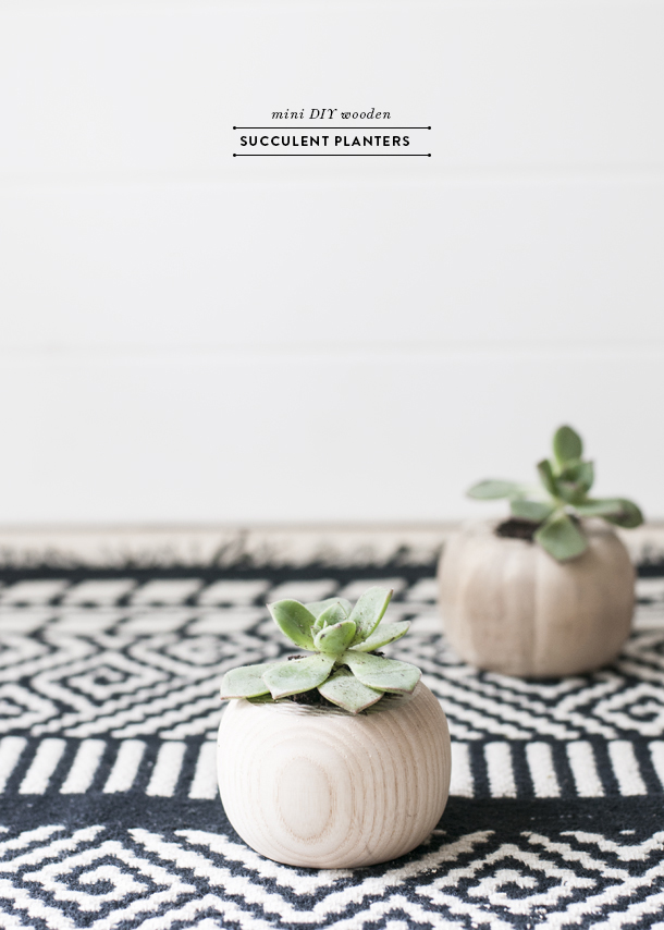 wooden succulent planters diy
