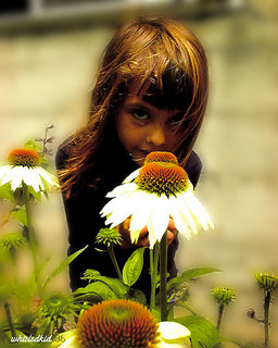 girl with white cone flower in front of her