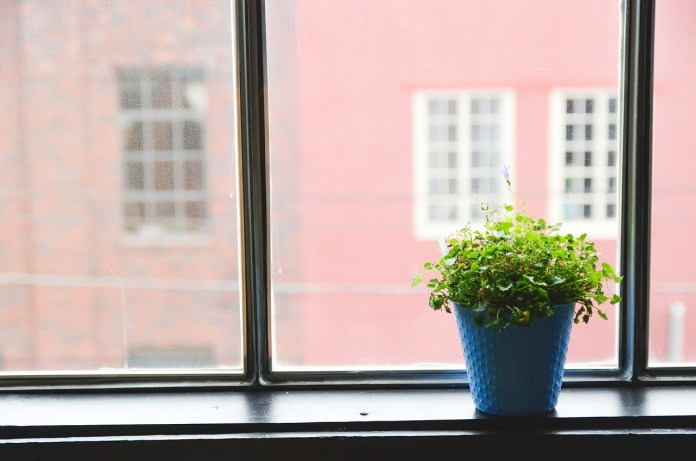 How To Greenify Your Older Home for Sale