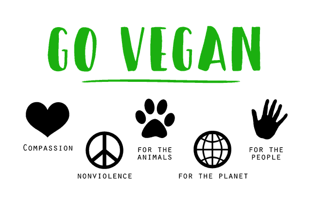 Reasons to go Vegan: For the Animals, the Planet and your Health!