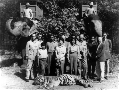 royals-india-hunting-052713
