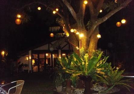 Mango Tree Iloilo