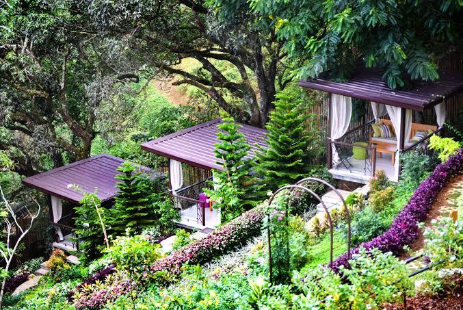Terrazas De Flores Botanical Garden Earthlingorgeous