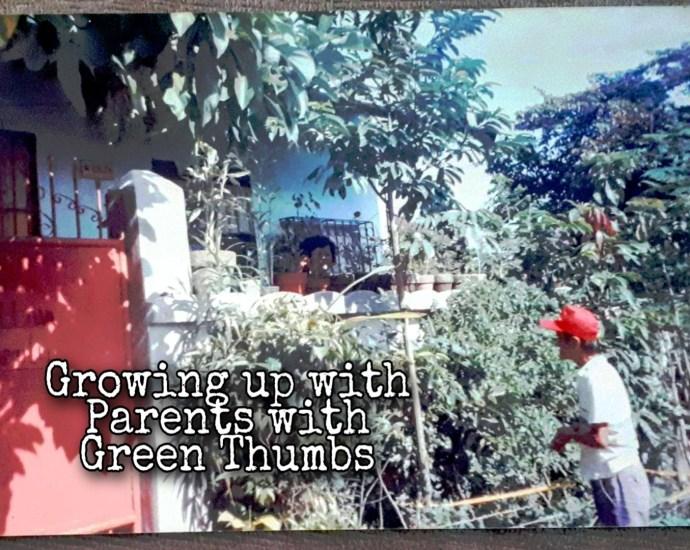 my #plantita #plantEartha journey