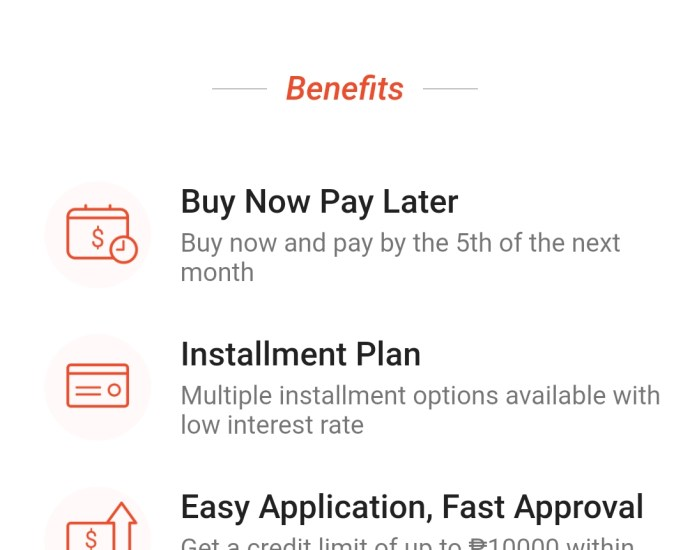 SPayLater Shop now Pay Later at Shopee