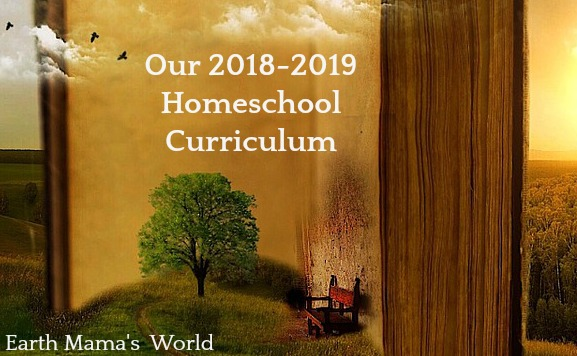 Our 2018-2019 Homeschool Curriculum