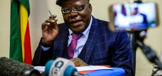 Elderly Zimbabwe Opposition Leader, Tendai Biti Arrested at Border