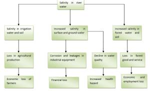 salinity problem in Bangladesh