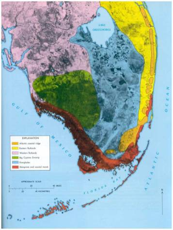 Physiographic regions of south Florida[4]