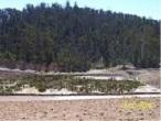 Wetland-2