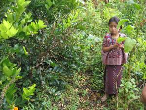 forest_girl