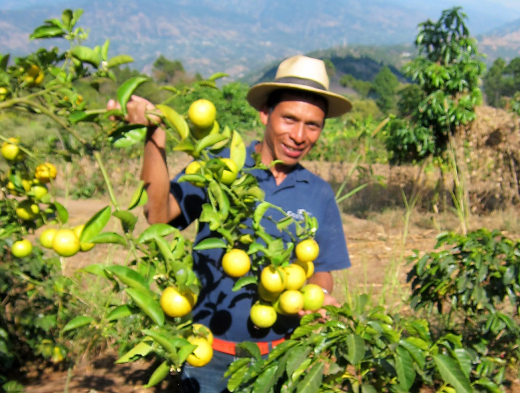 Guatemala Food Security Project