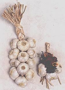 make a garlic braid