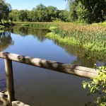 Val-Kill Pond