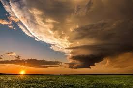 Midwestern meadow