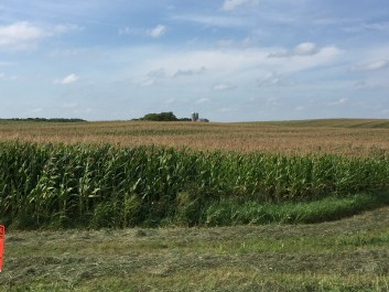 Corn farms stretched for miles