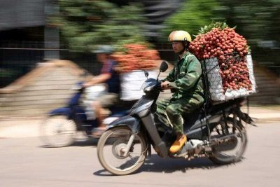 A man carries lychees on a motorbike on a street in Luc Ngan, Vietnam, 22 June 2016. (Photo: AAP).