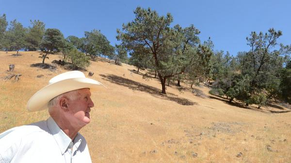 Rancher Jack Roddy is photographed on his ranch in Brentwood, Calif., Wednesday, June 19, 2013. After being targeted for estate-style home development for more than two decades, the acres of hills in the shadow of Mount Diablo will remain. East Bay Regional Park District agreed Tuesday to purchase the nearly 1,885-acre property for $14.25 million. (Susan Tripp Pollard/Bay Area News Group)