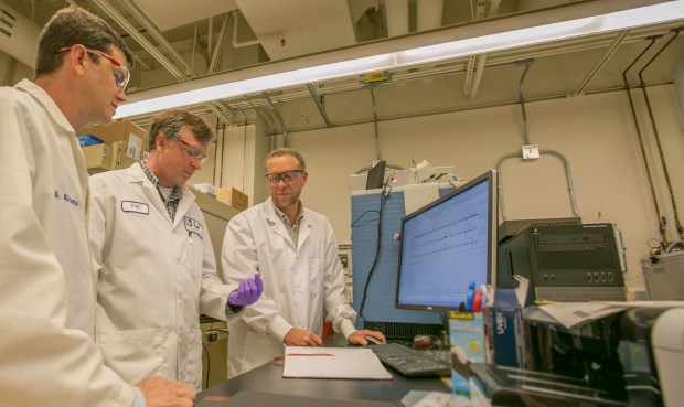 Brad Hart (left to right), director of Lawrence Livermore National Laboratory's Forensic Science Center, biochemist Glendon Parker and chemist Deon Anex analyze hair samples using protein markers from the hair. Researchers from LLNL and a Utah startup company have developed the first-ever biological identification method that exploits the information encoded in proteins of human hair.