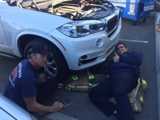 Contra Costa County firefighters rescued a cat from inside the engine compartment of a car Wednesday morning. (Contra Costa County Fire Protection District)