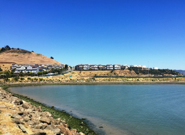 Waterline, a new housing development by Shea Homes, is slated to begin construction in the fall along the Point Richmond waterfront below the existing Seacliff homes seen here on May 19, 2017. (Tom Lochner)