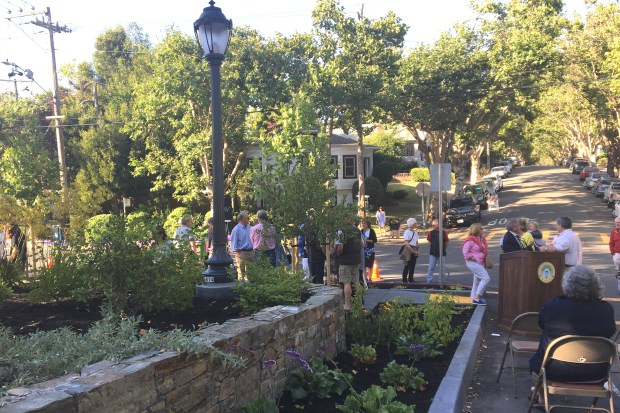 The new pocket park, part of the Linda Kingston triangle in Piedmont, is being hailed as a key example of public and private partnership in the city. (Sarah Tan/For Bay Area News Group)