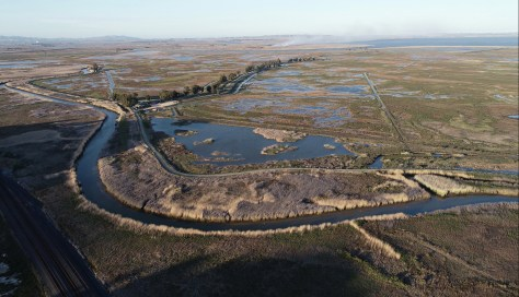 SOLANO COUNTY, CALIFORNIA – APRIL 7: Suisun Marsh as seen from Solano County, Calif., on Wednesday, April 7, 2021.There is a proposal to drill into the Suisun Marsh for fossil fuels. (Nhat V. Meyer/Bay Area News Group)