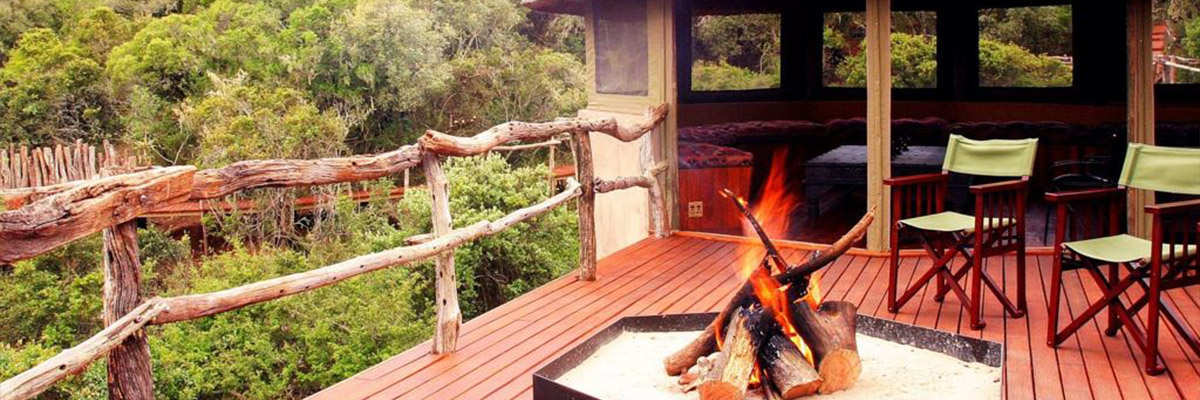 14 Day Garden Route Package Lalibela Tree Tops Safari Lodge