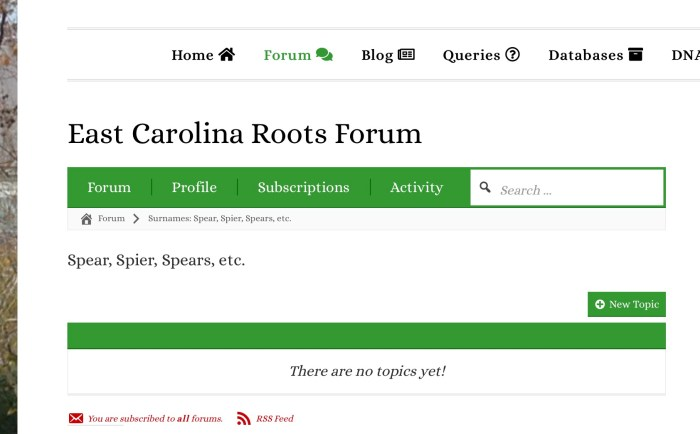 To start a new forum topic, click on the green + New Topic button.