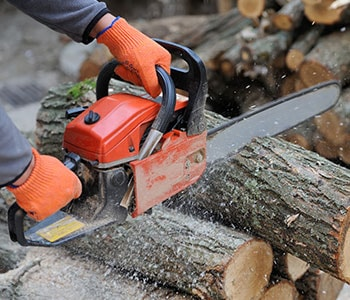 Close-up of Arborist Using Chainsaw to Cut Log of Wood