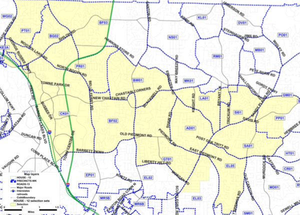 Candidates on the Issues: Georgia State House District 44 - East ...