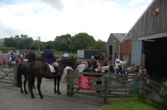 Show Jumping at Duchy College
