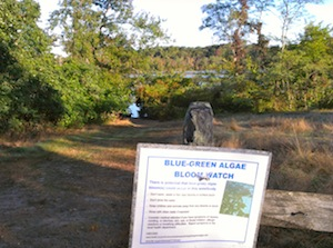 The Suffolk County Health Department's sign at Maratooka Lake.