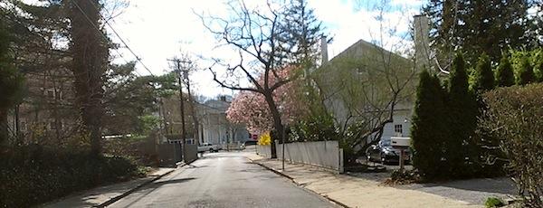 Sag Harbor Spring