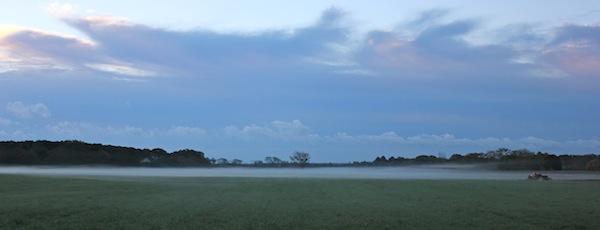 Misty morning farmland.