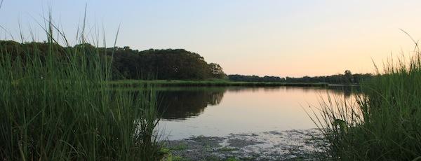 Meetinghouse Creek, Sunrise