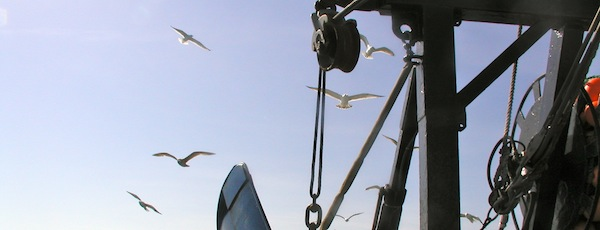 fishing off Montauk