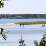 Mashomack, wading, Shelter Island