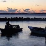 Peconic Bay Scallop Season Opening Day, 2014