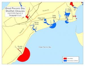 Great Peconic Bay shellfish closures