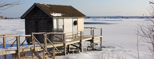 The Crab Shack, Orient, 2013