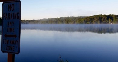 Wildwood Lake at Dawn, Northampton