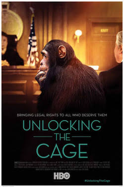 """""""Unlocking the Cage"""" will be the closing night film on Dec. 4"""