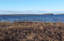 Winter on Flanders Bay