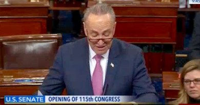 Chuck Schumer speaks after being sworn in as minority leader.