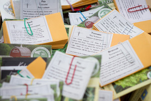 Seed packets available at the ECI seed library at the Hampton Bays library.